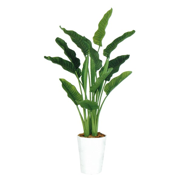 人工観葉植物 ストレリチア・オーガスタMIX 170cm 高さ170cm dt99174 (代引き不可) インテリアグリーン 造花