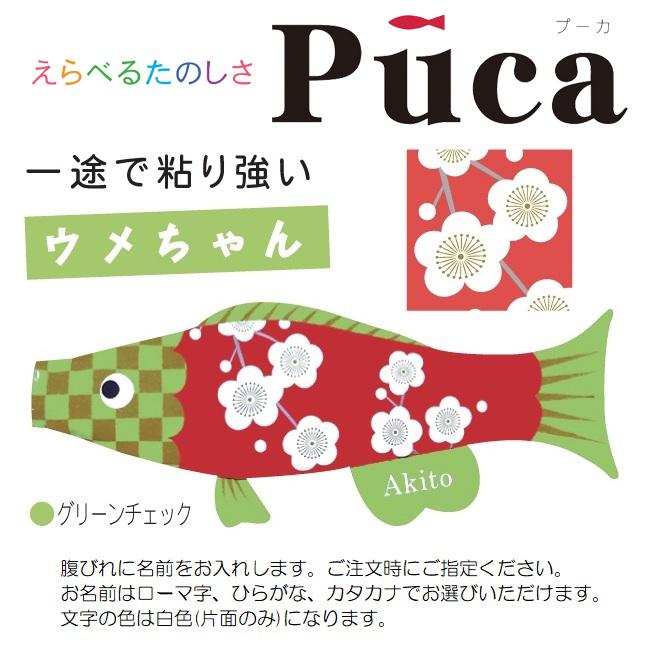 [徳永]室内用[鯉のぼり]えらべるたのしさ[puca]プーカ[ウメちゃん]グリーンチェック(M)[0.8m][日本の伝統文化][こいのぼり]