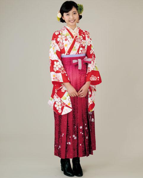 二尺袖着物袴フルセット 着物のブランド:HL(アッシュエル)ショート丈 卒業式に 新品 (株)安田屋 g406687454