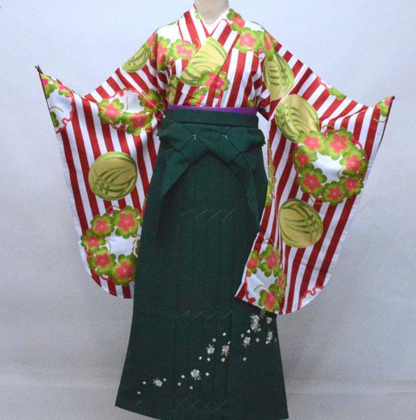 二尺袖 着物袴 フルセット KYOURAKU EVAKOMON 袴色を6色から選択できます 着物丈はショート丈 新品(株)安田屋 q331390094