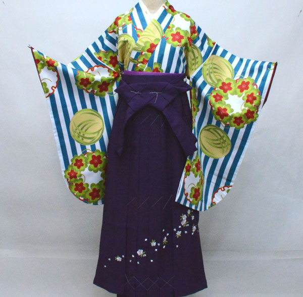 着物袴セット ジュニア用へ直し135cm~143cm KYOURAKU EVAKOMON 袴色を6色から選択できます 新品(株)安田屋 t689244832