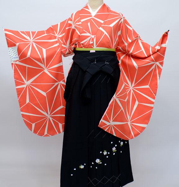 着物袴セット ジュニア用へ直し144cm~150cm ANEN 幾何学模様 着物生地は日本製 袴と縫製は海外 卒業式にどうぞ! 新品 (株)安田屋 w193150486