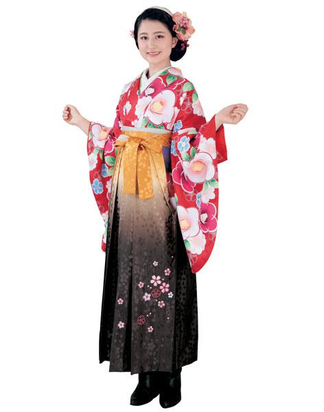 着物 袴セット ジュニア用へ直し 144cm~150cm H・L アッシュ・エル 卒業式にどうぞ! 新品 (株)安田屋 t577215776