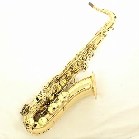 いいスタイル 【【】 演奏】 セルマー SERIE III S-III テナー サックス サックス ハードケース 付 楽器 趣味 演奏 SELMER W3695312, シモダテシ:e8667aa8 --- evirs.sk