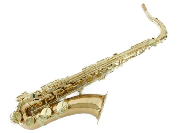 激安直営店 美品【】 Y3775481 YANAGISAWA やなぎさわ 美品 T-WO2 Tenor Saxophone テナーサックス やなぎさわ 楽器 Y3775481, 東京グラス激安センター:f0bae157 --- scrabblewordsfinder.net