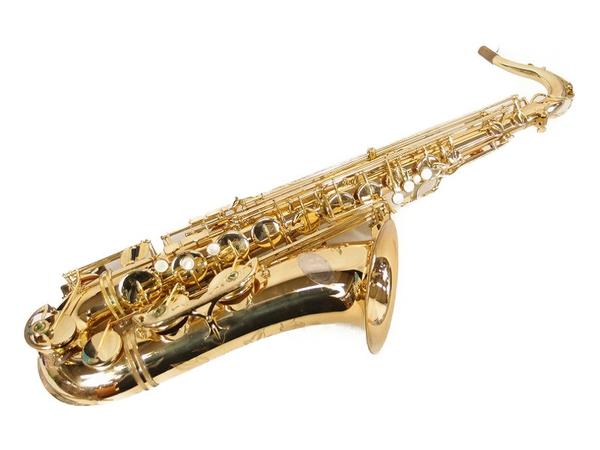 【日本未発売】 【】 付 io JUPITER ハードケース イオ ジュピター 彫刻 テナー サックス TS-1085 ハードケース マウスピース 付 彫刻 入 管楽器 S2928575, ニッタマチ:3031dbf5 --- greencard.progsite.com