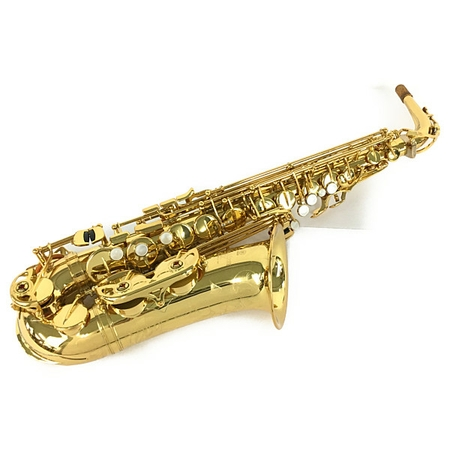 有名なブランド 【】【】 YAMAHA YAS875EX YAMAHA アルトサックス 楽器 楽器 ヤマハ Y5179273, 子供家具玩具のファーストキッズ:e6a8c556 --- baecker-innung-westfalen-sued.de
