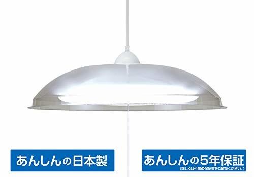タキズミ LED洋風ペンダント ~8畳 クリアセード RV89081