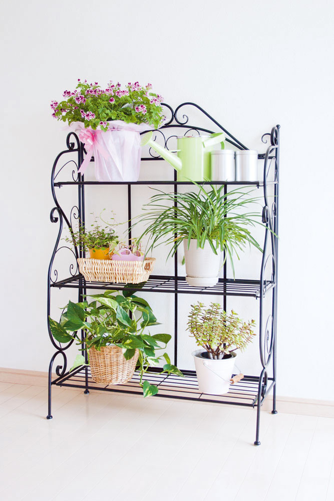 Turned Into A Stylish Garden Rack Width Ivory / Black GD 1900/GD 1901 Next  To The 75 × Depth 30 × Height 110 Cm As A Flower Stand, Flower Shelf
