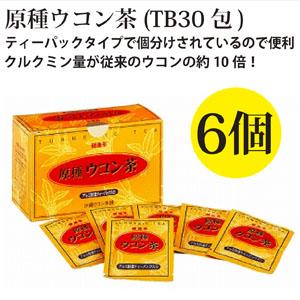 原種ウコン茶6箱(1箱・30包入り)