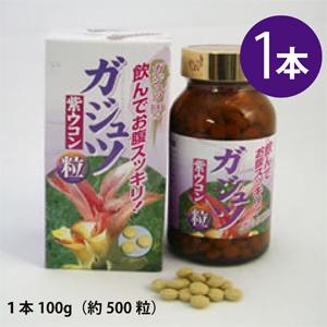沖縄産ガジュツ粒 1本(1本・100g)