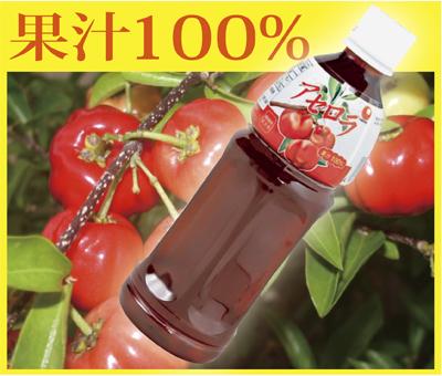 送料無料果汁100%!アセロラジュース500ml×20本ビタミンCとアントシアニンがたっぷり!アセロラドリンク