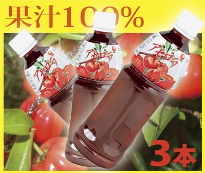 送料無料果汁100%!アセロラジュース500ml×3本ビタミンCとアントシアニンがたっぷり!アセロラドリンク