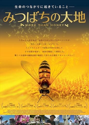 ミツバチの生態に迫り 人類との繋がりを見つめ直すドキュメンタリー お得セット 2020新作 みつばちの大地 TOBA0129-TOB DVD