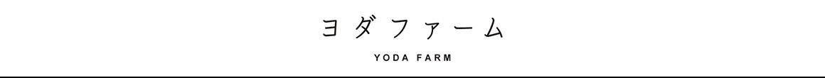 ヨダファーム トマトひと筋半世紀:ハウス桃太郎トマト農家直販