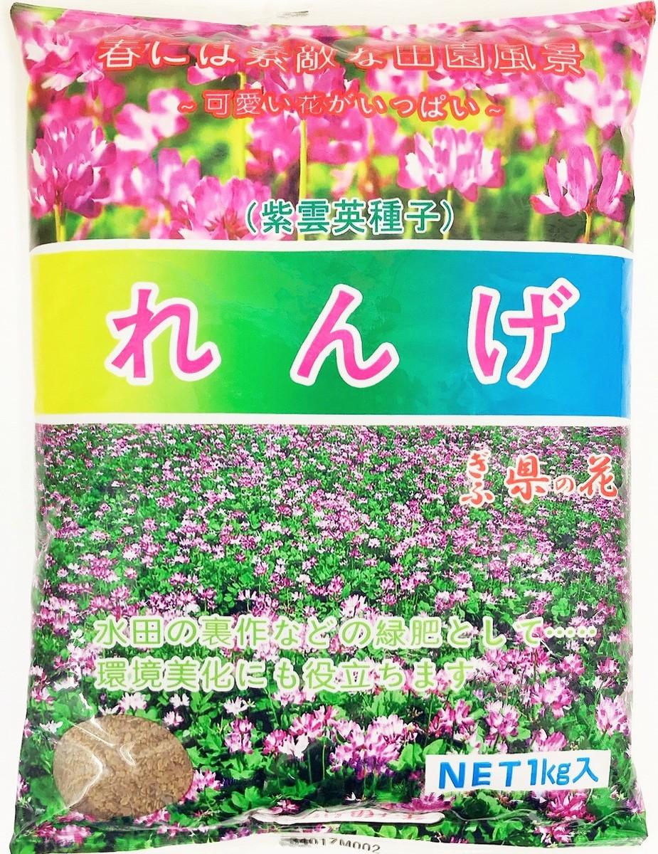 緑肥 景観 当店は最高な サービスを提供します ハチミツ れんげ草 種 日本最大級の品揃え 2021年産 1kg レンゲ種子 緑肥の種