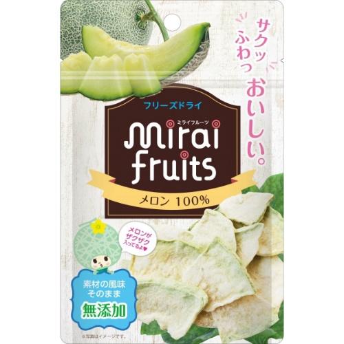 【送料込・まとめ買い×72個セット】ビタットジャパン ミライフルーツ メロン 10g