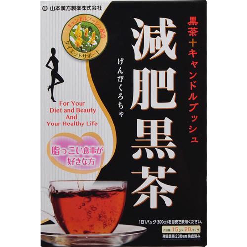 【送料無料・まとめ買い×20個セット】山本漢方製薬 減肥黒茶 15g×20包入