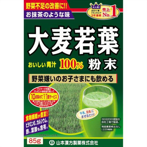 【送料無料・まとめ買い×20個セット】山本漢方製薬 大麦若葉粉末100% 85g
