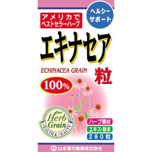 【送料込・まとめ買い×20個セット】山本漢方製薬 エキナセア粒100% 280粒