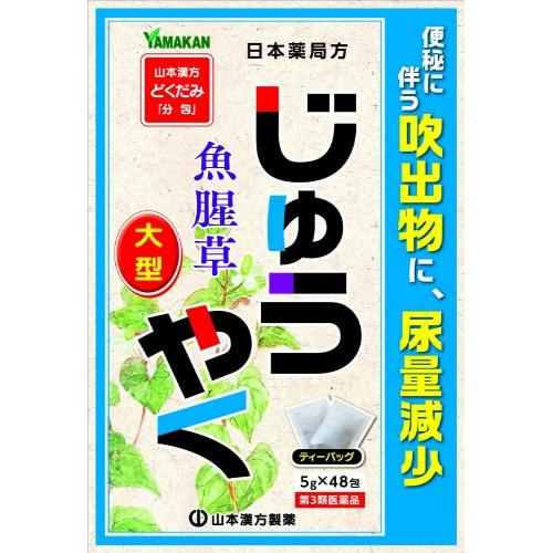 【送料込・まとめ買い20個セット】【第3類医薬品】じゅうやく徳用 5g×48包