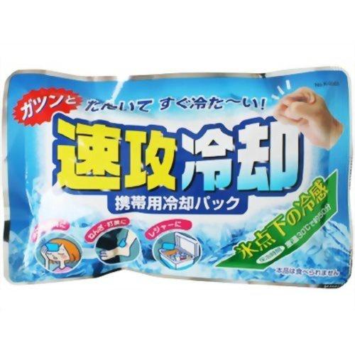 【送料無料】紀陽除虫菊 速攻冷却 携帯用冷却パック×120個セット