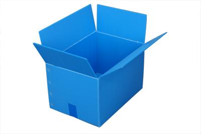 プラダンボックス Lサイズ 長さ510mm×幅480mm×高さ 390mm 10箱 通い箱として!ダンボール箱の代わりにプラスチック素材のみかん箱を!