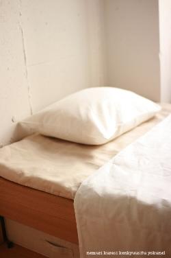 Duvet cover quilt cover single 150x210cm true hemp (France linen 100%)