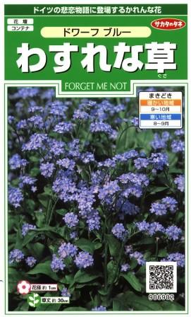 ドイツの悲恋物語に登場するかれんな花 人気激安 日本 わすれな草 ドワーフブルー サカタのタネ 906902 秋まき 0.2ml 耐寒性一年草