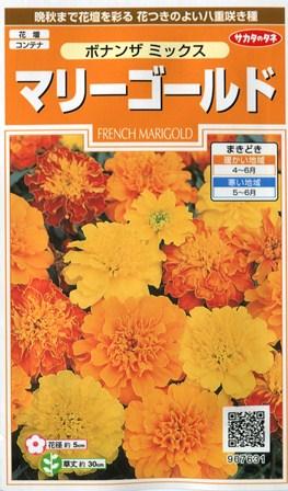 【マリーゴールド】ボナンザミックス【サカタのタネ】(2ml)【春まき一年草】907631