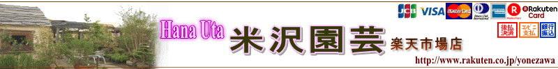 Hana Uta 米沢園芸 楽天市場店:5店舗運営の総合園芸店から、通販経験を活かしてお役に立てますよう!