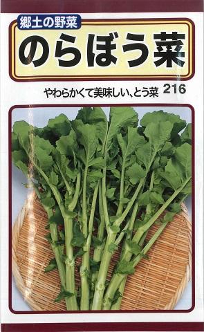郷土の野菜 やわらくて美味しい とう菜 のらぼう菜 ノラボウナ 周年 秋まき 10m 公式 トーホク 野菜種 販売期間 限定のお得なタイムセール