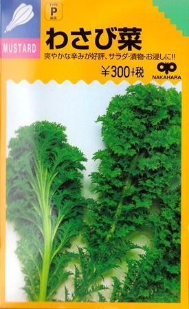 葉菜類 種 わさび菜