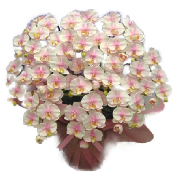 造花 光触媒 胡蝶蘭 大輪 さくらピンク M 10本立ち