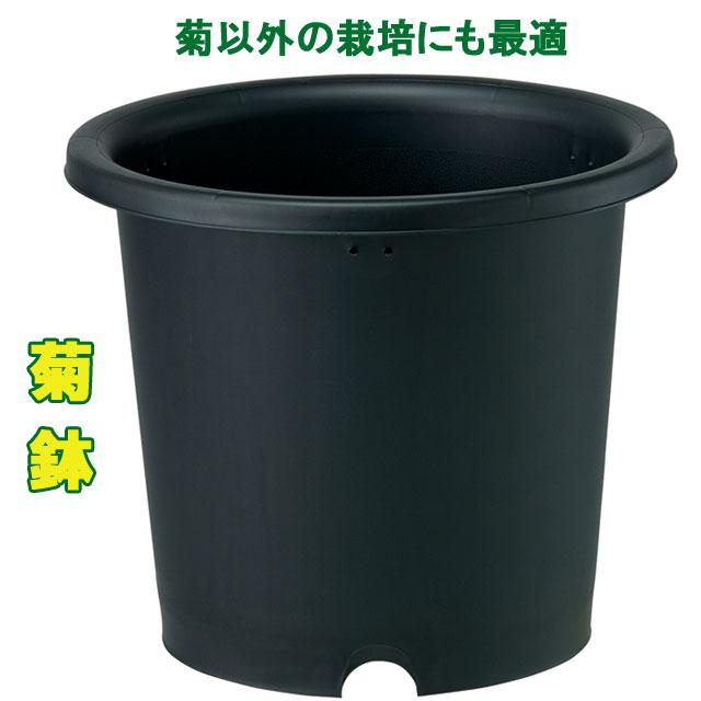 菊鉢10号 20個セット(P10)/ポット 鉢 プラスチック おしゃれ