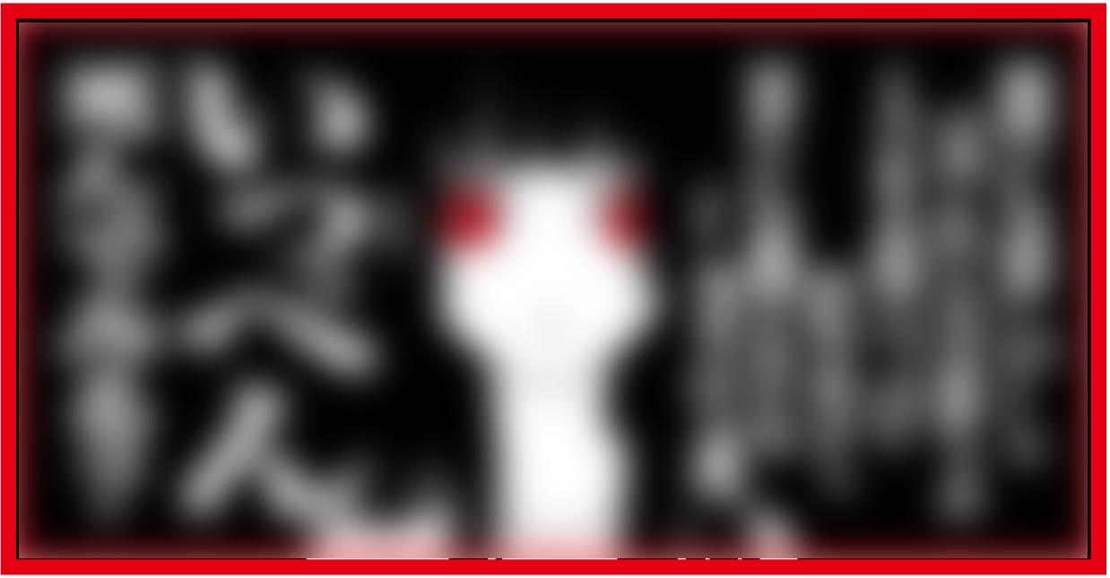 代引対応可 カー用品 アンドン板 登場大人気アイテム 普通ナンバーサイズプレート 人気キャラ 普通ナンバーサイズ デコトラ ※アウトレット品 トラック プレート 165×335