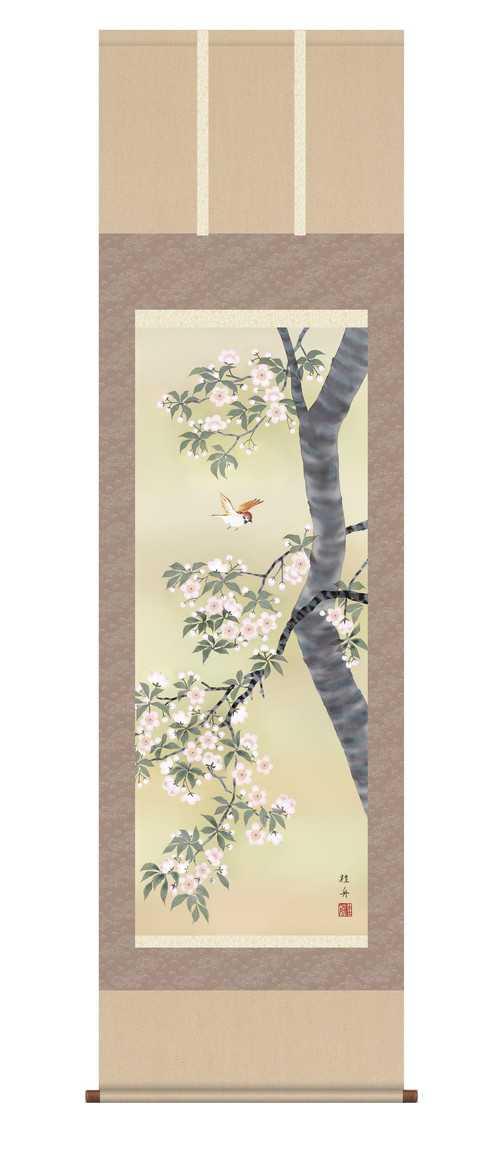 掛軸「桜花に小鳥」 長江桂舟 筆 【掛け軸 掛軸 年中】 尺五
