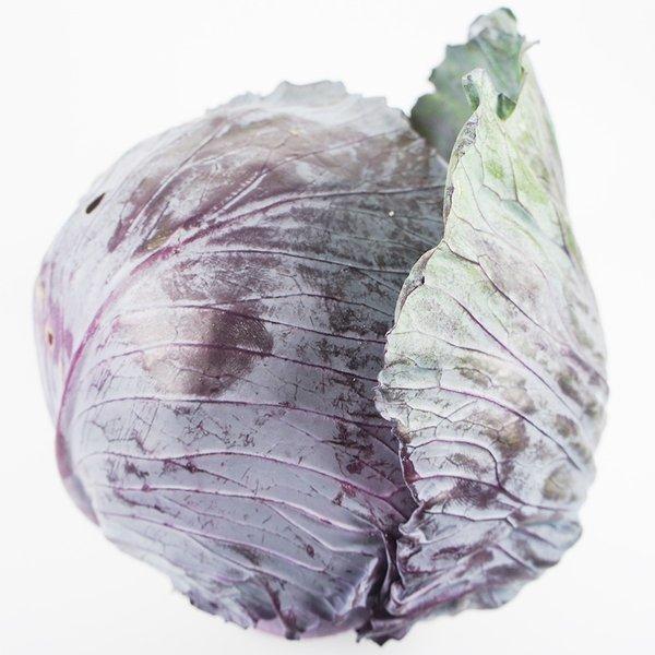 鮮やかな葉が食卓の彩りに♪ 紫キャベツ(レッドキャベツ・赤キャベツ) 単品