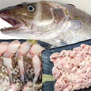 新鮮な真タラでタラチリを食べよう!白子も楽しめる! 【送料無料】真タラ(オス:白子入り)(約4~5kg)【北海道・九州・沖縄・離島はお届け不可】