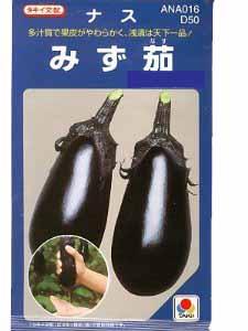 多汁でやわらか 浅漬は天下一品 みず茄 2000粒 水なす種子 新作 人気 ナス種 送料無料 永遠の定番 タキイのタネ 野菜の種