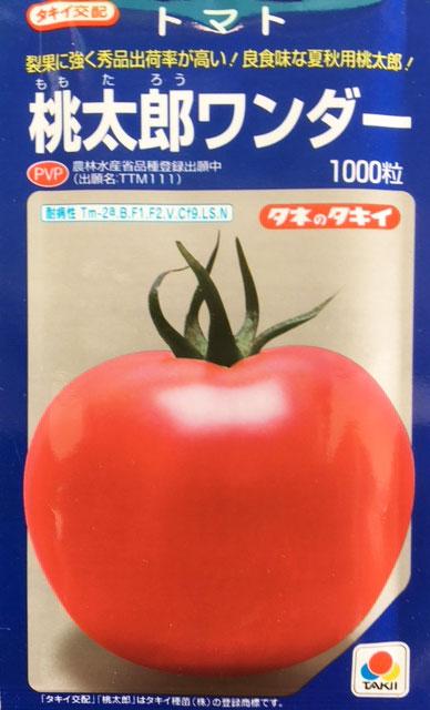 【送料無料】桃太郎ワンダー 大玉トマト種子 1000粒 【トマト種】【タキイのタネ】【野菜の種】