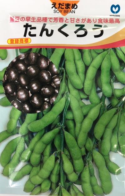黒豆の早生品種で芳香と甘さがあり食味最高 たんくろう 枝豆種子 高級品 贈与 丸種種苗 1L 黒エダマメ