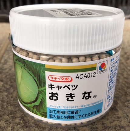 キャベツ種子 おきな Lコート5000粒 早生種 【野菜種子】 【タキイ種苗】