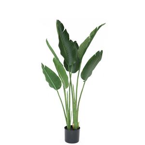 人工観葉植物 フェイクグリーン オーガスタ1150【フェイクグリーン・ニコライ・人工観葉植物・トラベラーズパーム】