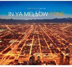 CD、音楽 ・Robert de Boron・Soulchef・Robert de Boron + Othello・Hidetake Takayama・Acro Jazz L 【中古】CD▼IN YA MELLOW TONE 8 イン・ヤ・メロウ・トーン