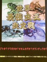 趣味 実用 在庫あり 中古 DVD レンタル落ち 世界最強虫王決定戦 日本未発売