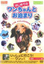【中古】DVD▼はじめてのワンちゃんとお泊り▽レンタル落ち