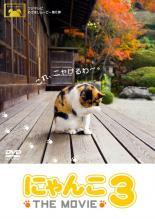 その他 ドキュメンタリー 田中麗奈 中古 DVD THE 3 にゃんこ レンタル落ち MOVIE 割引 誕生日/お祝い