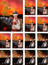 全巻セット【送料無料】【中古】DVD▼NHK大河ドラマ 太平記 完全版(13枚セット)第1回~第49回 最終▽レンタル落ち 時代劇