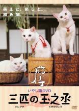 趣味 お買得 実用 あなご さくら 若 大人 猫侍 三匹の玉之丞 レンタル落ち いやし猫DVD DVD 受注生産品 中古